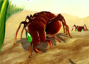 Bug War Game