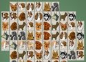 Dog Mahjong 2 Games