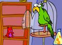 Polly papagályos Game