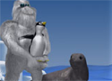 Seal Bounce Game